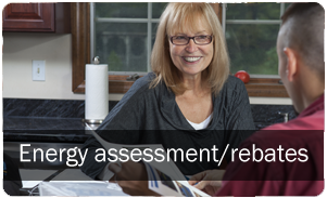 Energy assessment and rebates